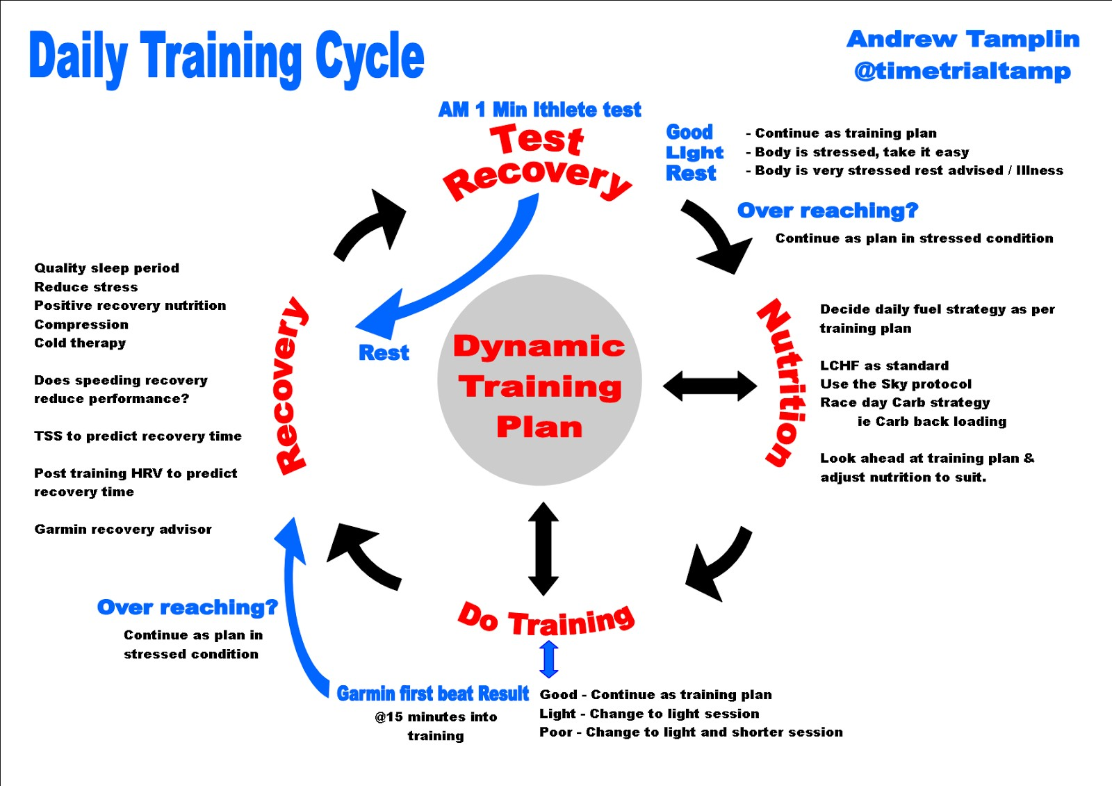 Training cycle infographic